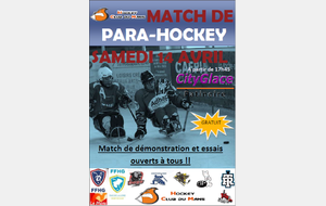 Match Hockey Luge au Mans